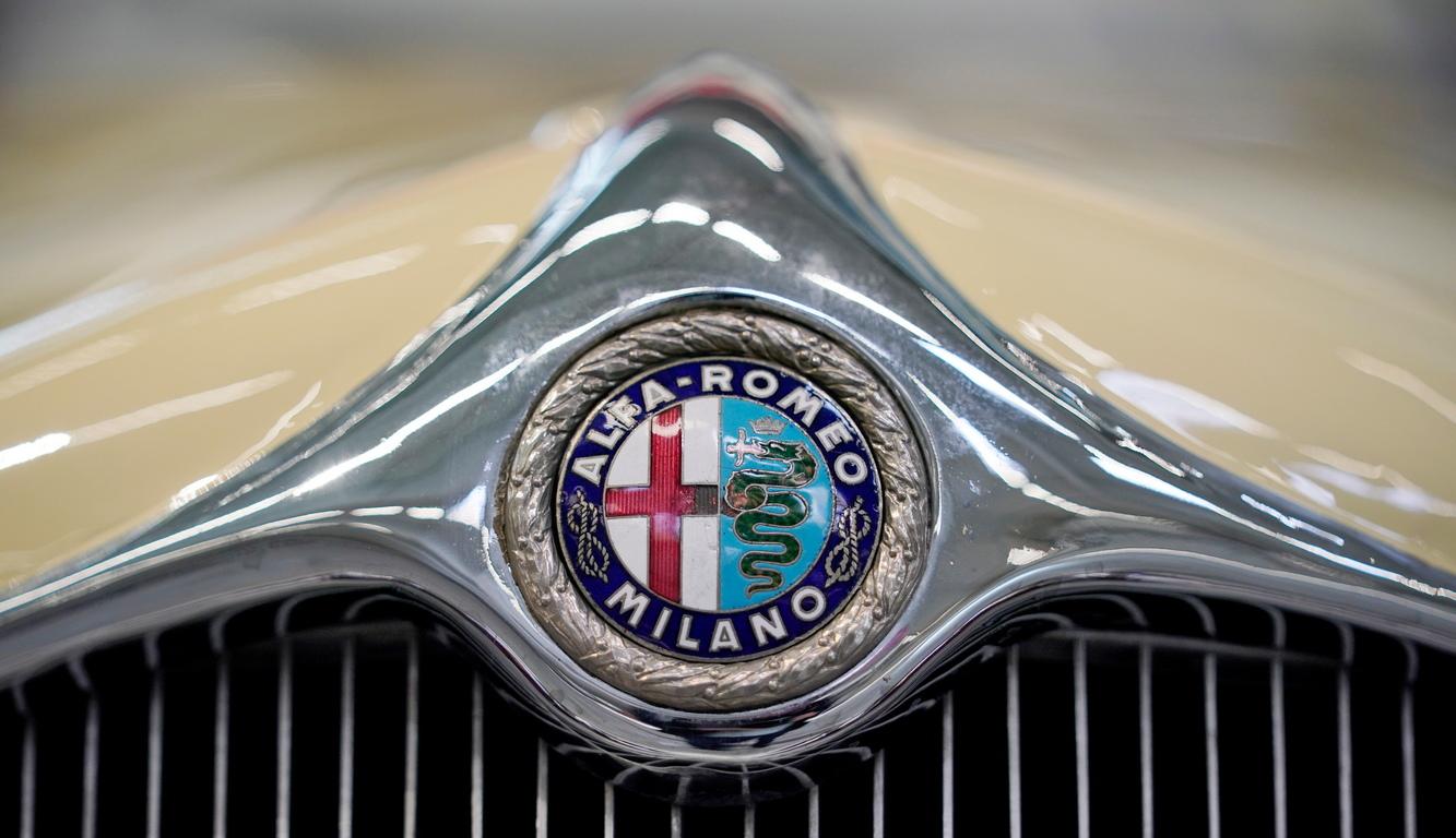 <p>Логото на Alfa Romeo 6c Castagna</p>