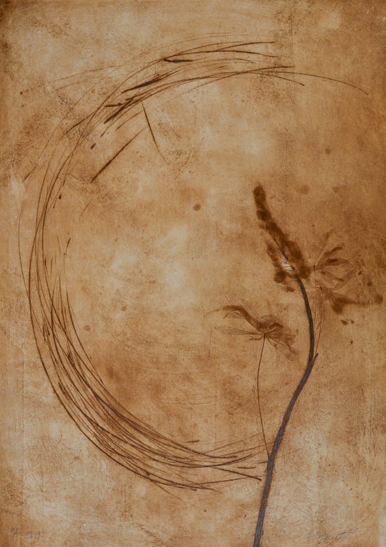 <p>Елизабета Диаманти | Elisabetta Diamanti Mono Lupinus Bronzo | edition 1 инталио I intaglio</p>