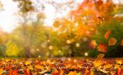 Златна есен, но кога ще има сняг