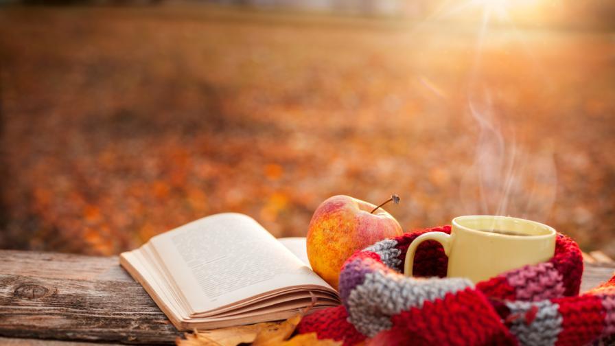 <p><strong>Книгите,</strong> които да прочетем през <strong>октомври</strong></p>