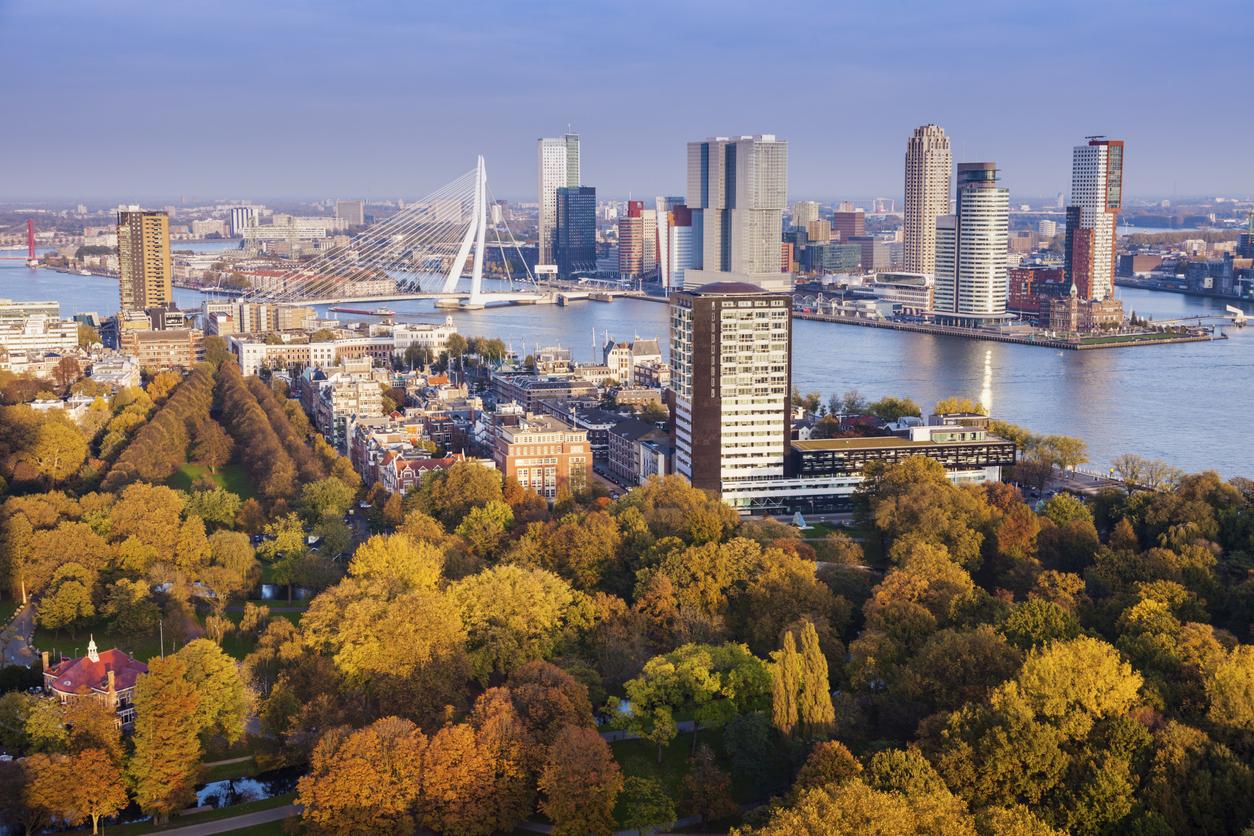 """<p align=""""center""""><strong>БЛИЗНАЦИ &ndash; Ротердам, Нидерландия</strong></p>  <p align=""""center"""">През последните години Амстердам се превърна в една от най-популярните дестинации сред европейските младежи. Ротердам също има своите красоти и тайни, които да разкриете, разхождайки се из цветните му улици.</p>"""