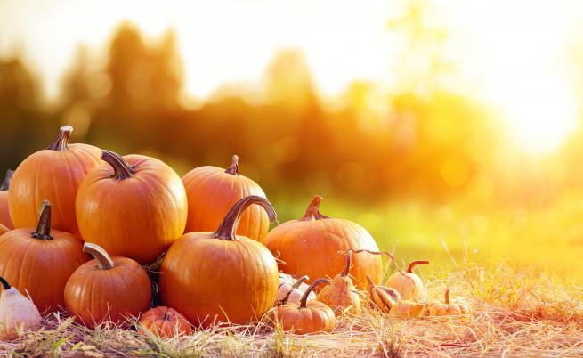Златна есен с високи температури, докога