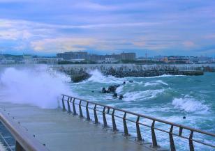 Тайфунът Хагибис продължава да взима жертви в Япония