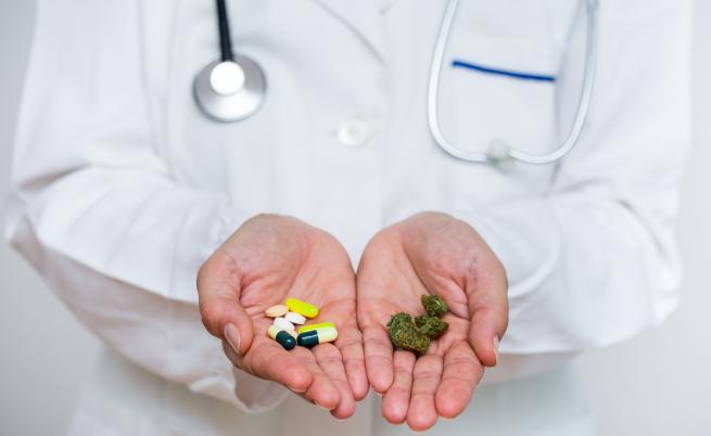 Възможно ли е канабисът за медицински цели да бъде легализиран у нас