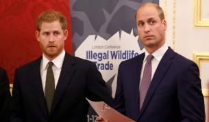 Искри прехвърчат в кралския двор. Скарани ли саУилям и Хари?