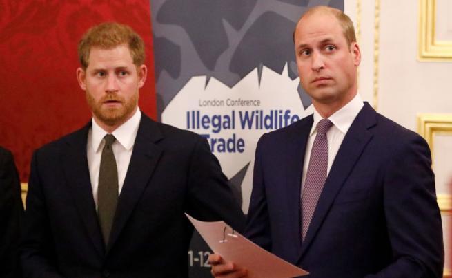 Искри прехвърчат в кралския двор. Какво се случва между Уилям и Хари?