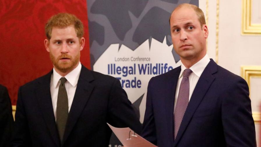 <p><strong>Искри</strong> прехвърчат в кралския двор. Скарани ли са<strong>&nbsp;Уилям и Хари?&nbsp;</strong></p>