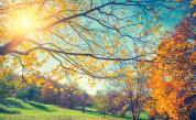 Слънчево днес, колко се затопля времето