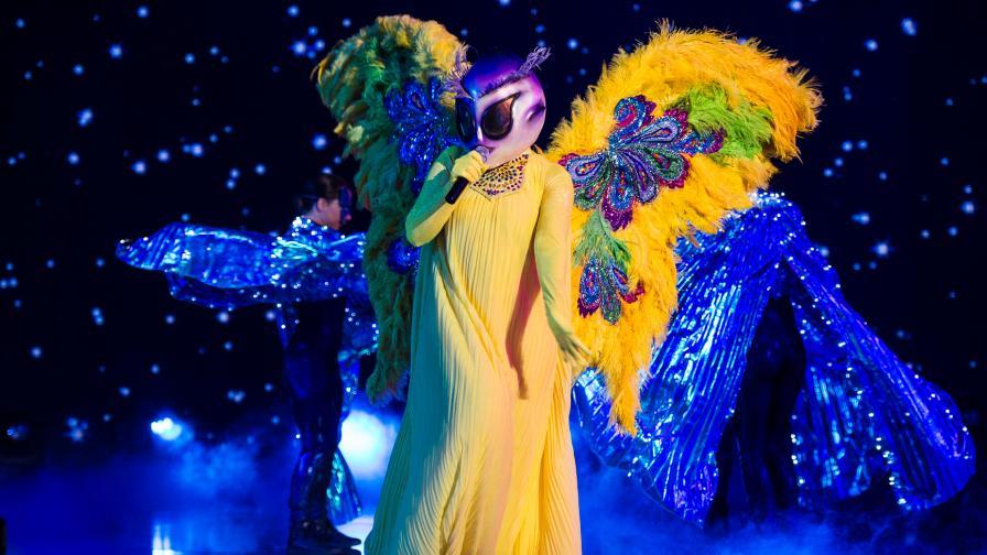 <p>Пеперудата 🦋: Танцувах и пях, както бих го правила сама у дома</p>