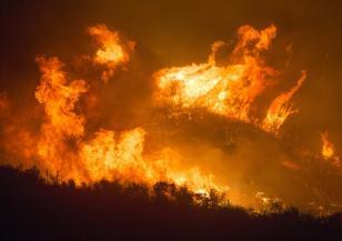 Огромен пожар избухна край Делхи
