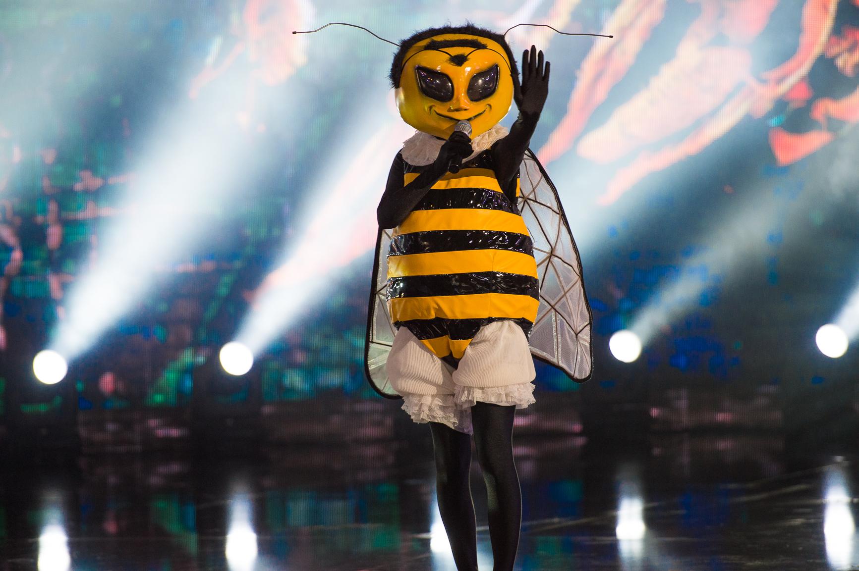 <p>Пчелата</p>