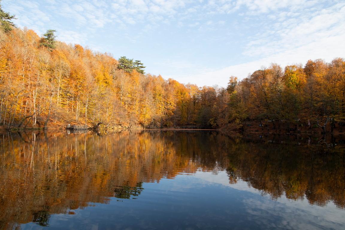 <p>Паркът е разположен на надморска височина от 900 метра в район Менген в северната част на провинция Болу и на юг от Зонгулдак в западния регион на Черно море</p>