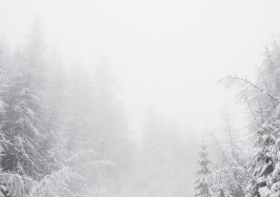 Зимата настъпи във Франция