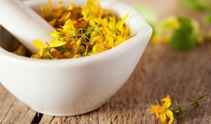 Полезните свойства на магическата билка жълт кантарион