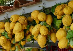 Време за...лимоново сорбе