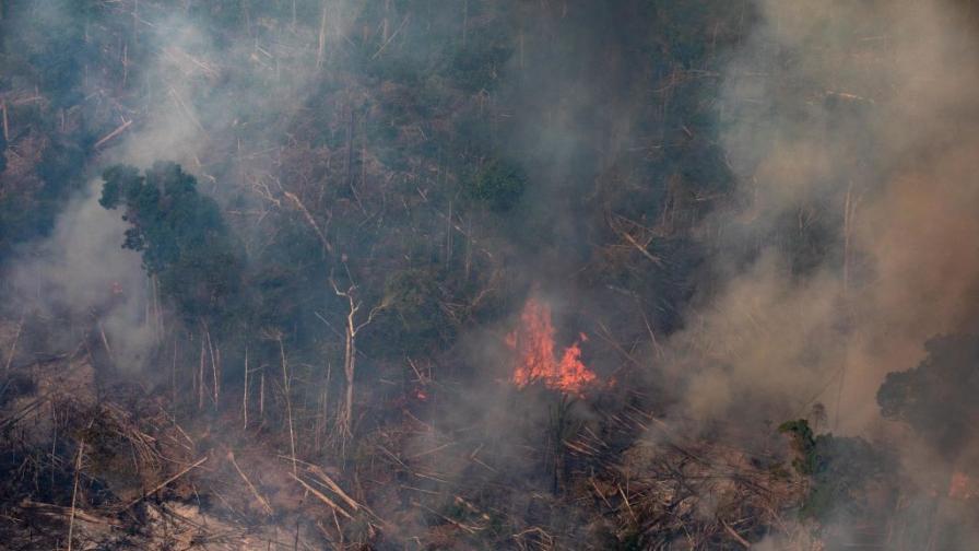 <p>Амазонските <strong>пожари </strong>могат да се окажат <strong>катастрофални</strong></p>