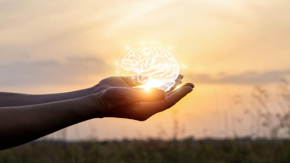 ръце ум интелигентност