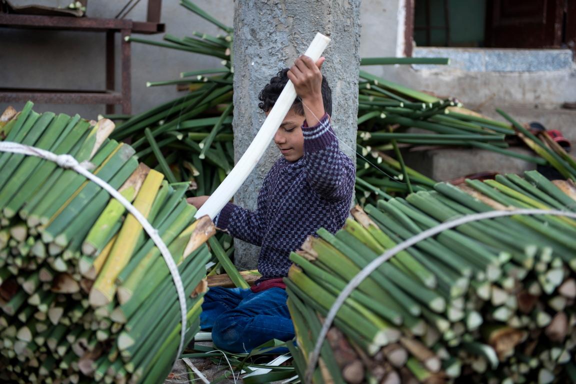 <p>Потапяне на нарязаните стъбла във вода, за да се получи гъвкавост, след това в хлор, за да ги избели.</p>
