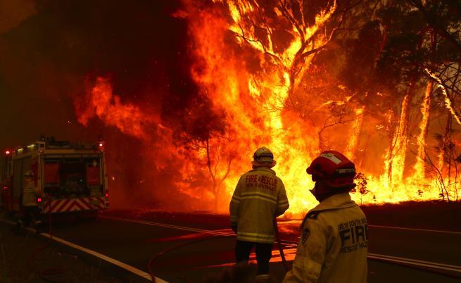 Българка от огнения ад в Австралия: Пожарите продължават
