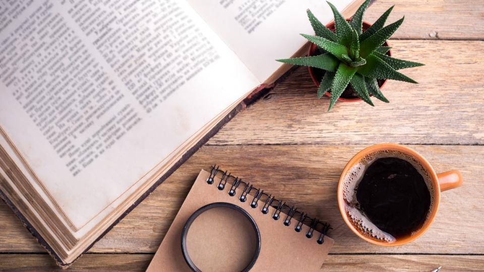 кафе сутрин кактус