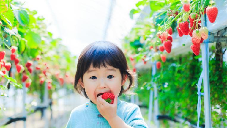 Защо нашите деца са по-болнави от япончетата?