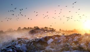 Кметът на Червен бряг: Боклукът е на труднодостъпно място - България | Vesti.bg