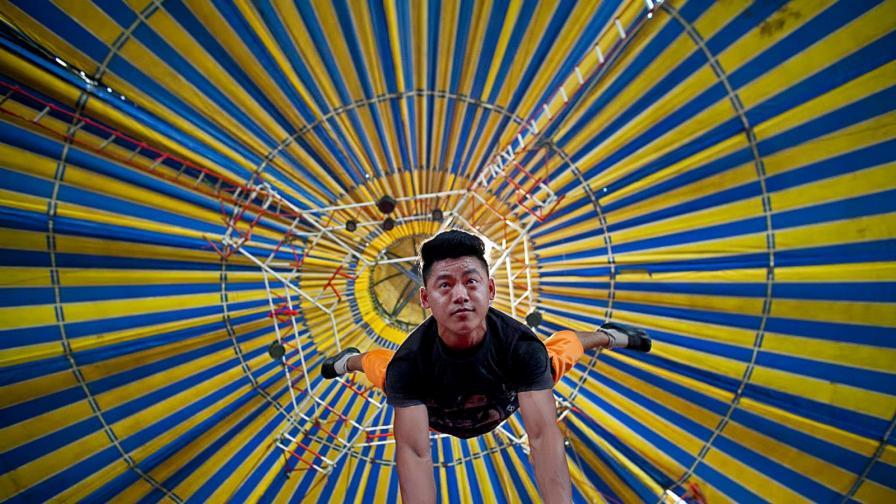 Цирк в Индия