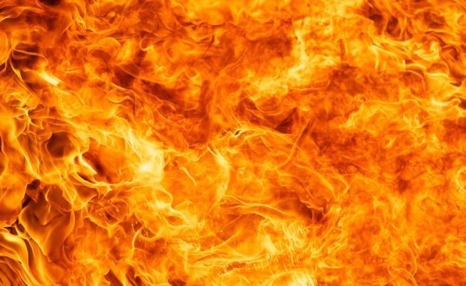 Пожар в защитената местност Калимок край Тутракан