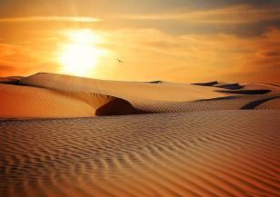 Ще се превърне ли Европа в пустиния