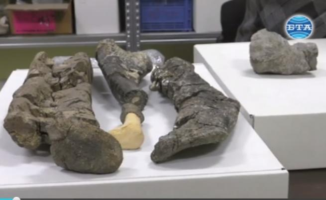 Какви динозаври са живели в България