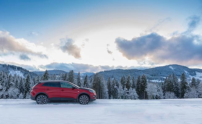 Изглежда красиво, но в края на януари това бяха много редки гледки в Германия и Швейцария.