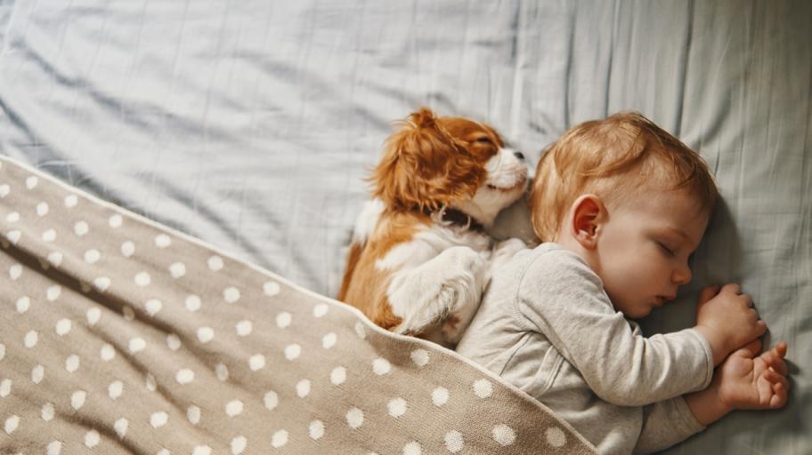 Колко спи бебето на 6 месеца