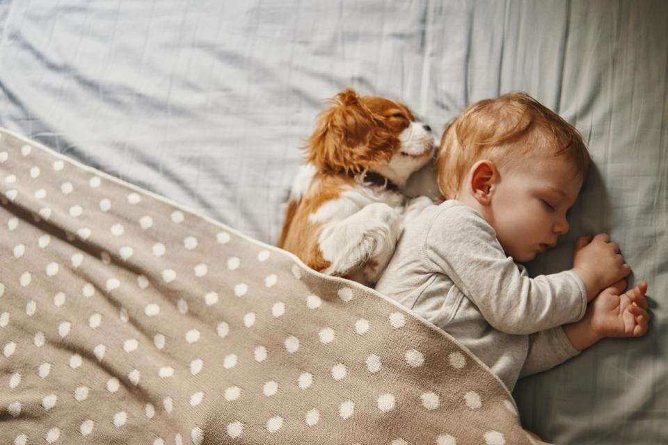 бебе сън