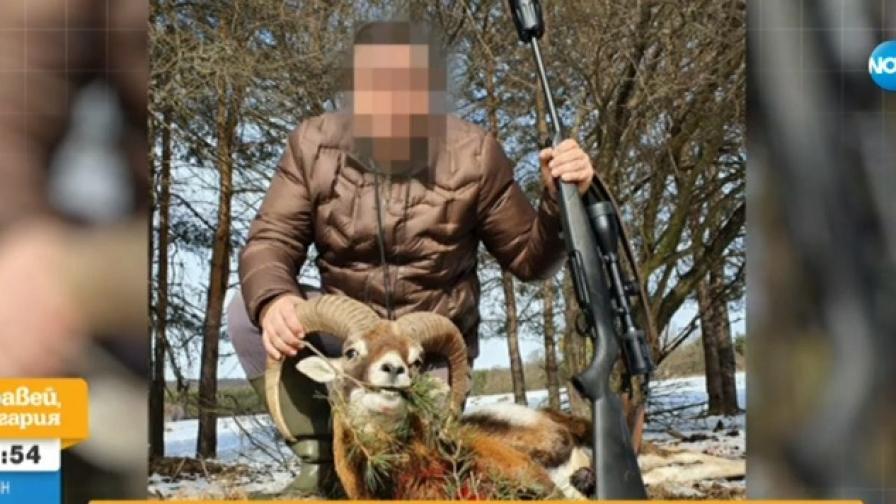 Мъж отстреля муфлон, гняв в социалните мрежи