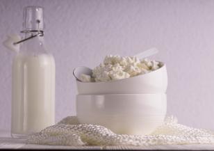 Пробиотични храни за здрав имунитет