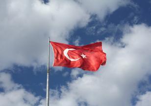 Поредно земетресение разлюля Турция
