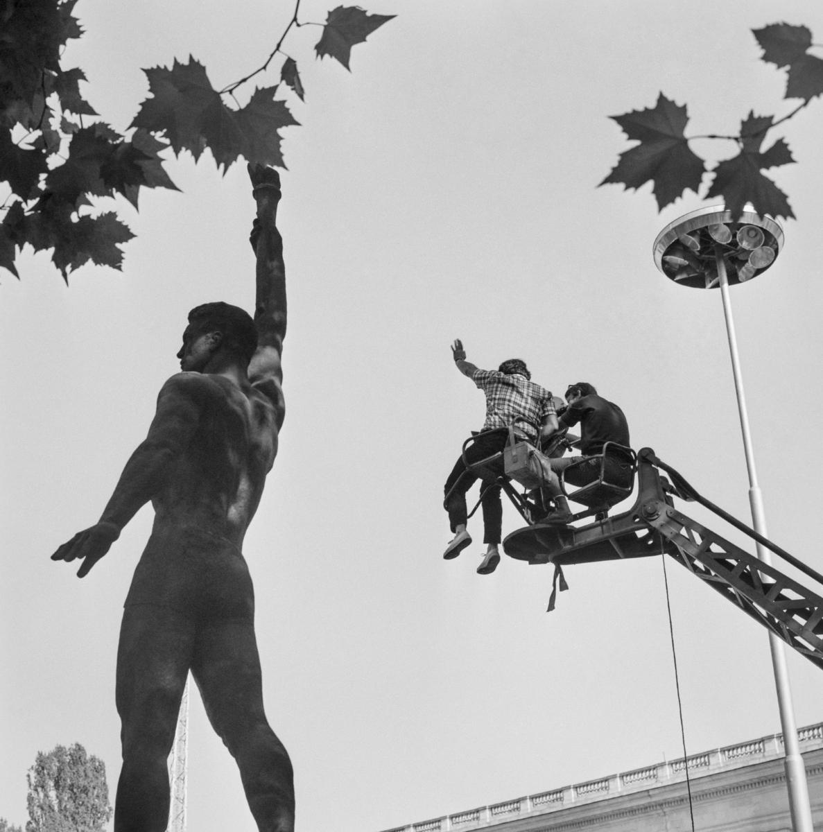<p>&quot;Таралежите се раждат без бодли&quot;. Фотограф: Жана Карайорданова. Национален стадион &quot;Васил Левски&quot;.</p>