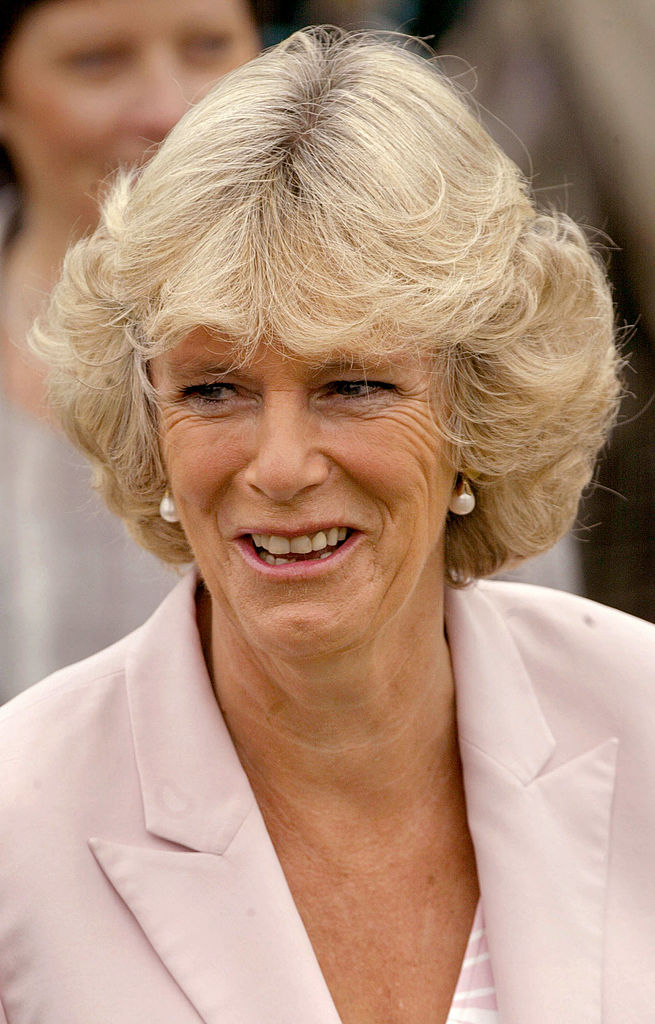 <p><strong>Не искат Камила да стане кралица</strong></p>  <p>Едно проучване показва, че едва 20% от хората във Великобритания са съгласни с това Камила да стане кралица. Това със сигурност има общо с миналото на принц Чарлз и принцеса Даяна.</p>