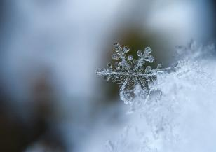 По старопланинските проходи също валя сняг