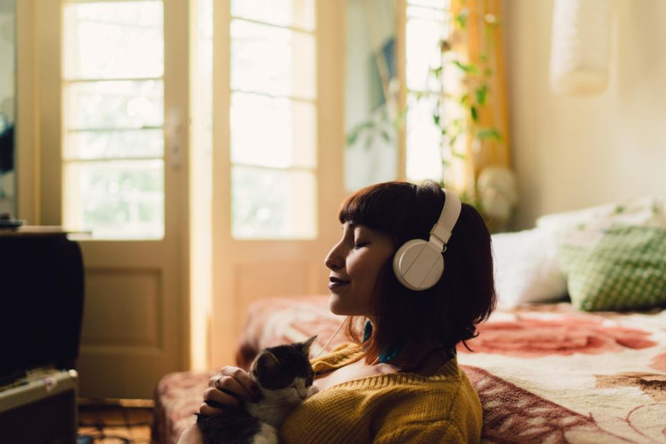 жена музика котка
