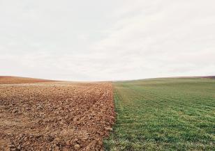 Защо почвената покривка на Земята е кафява