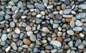 <p>Японски художник кара камъните да оживеят</p>