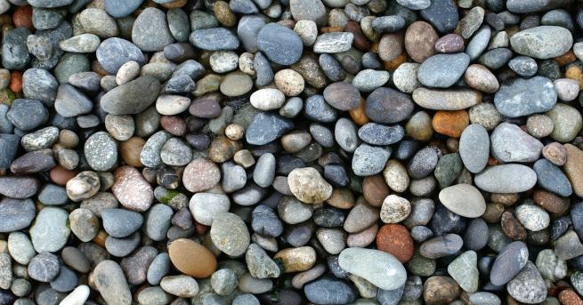 Любопитно Японски художник кара камъните да оживеят За Акие Наката