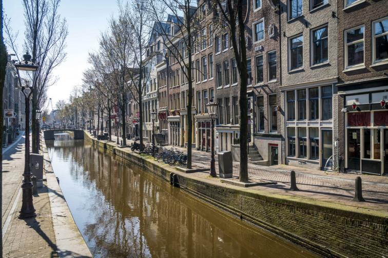 нидерландия холандия коронавирус ковид зараза ученици лаптопи