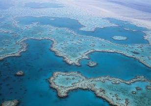 Големият бариерен риф отново избеля
