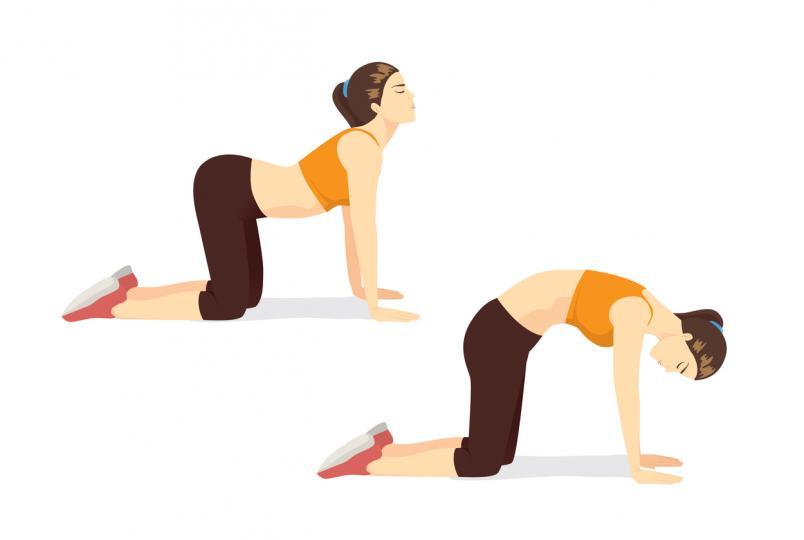 <p><strong>Котка-крава</strong></p>  <p>Балансирайте ръцете и коленете си, докато насочвате главата и таза нагоре, така че гърбът да се извие. След това стегнете таза, насочвайки брадичката си към гърдите и извийте гърба си нагоре като арка. Това раздвижва гърба чрез извиване и разтягане.</p>
