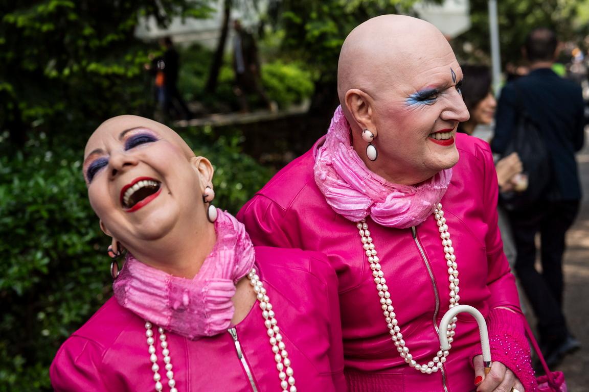 <p>Розовият цвят</p>