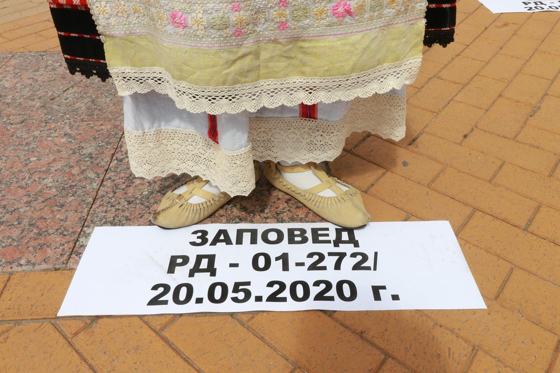 <p>В Деня на българската писменост и култура те поискаха залите за култура да бъдат отворени и споделиха, че не виждат логика спортните зали да се отворят, фитнесите, заведенията, а те не, и направиха демонстрация как могат да танцуват без да се докосват.</p>