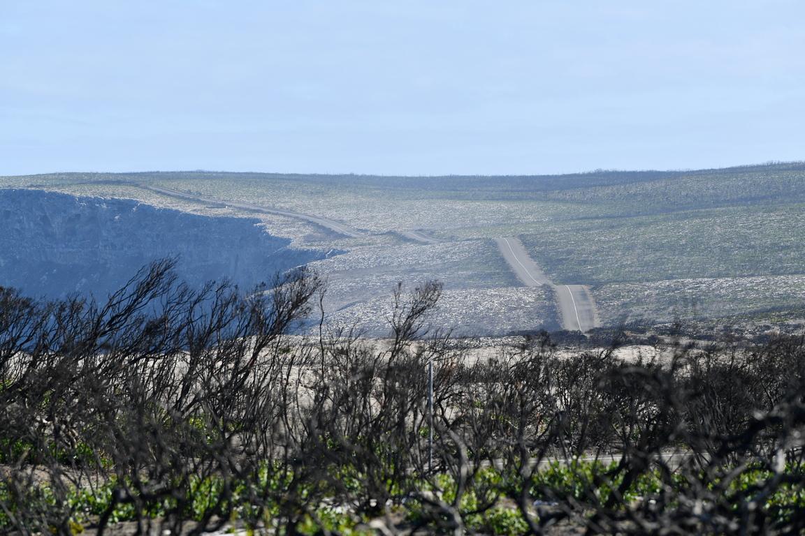<p>Двама души загинаха на остров Кенгуру заради пожарите. Редица видове диви животни, някои уникални за остров Кенгуру и някои, които вече бяха застрашени преди бурните пожари през 2019-2020 г., може да са изправени пред изчезване в природата в резултат на пожарите.</p>