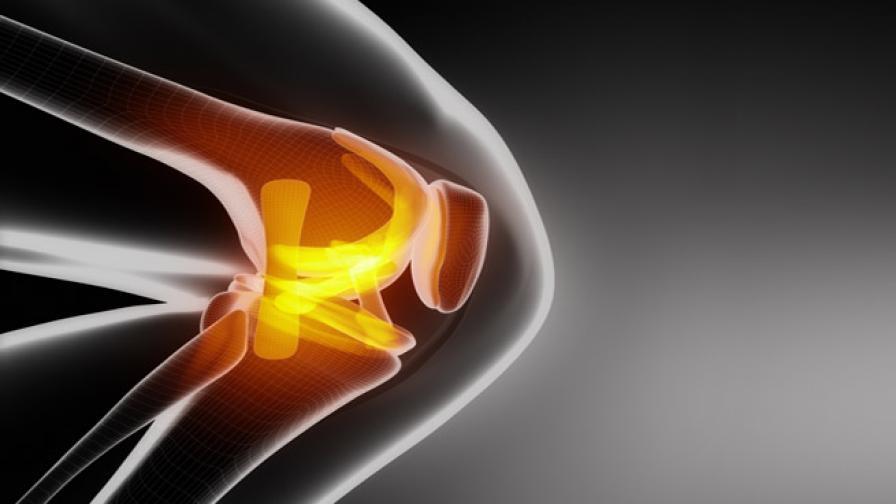 Откриха специален 3D колаген за здрави стави